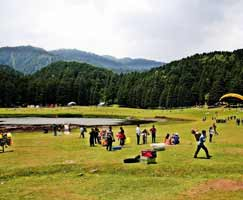 Dalhousie Honeymoon
